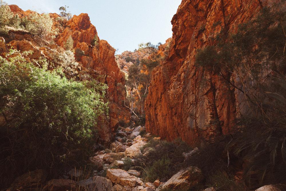 Alice Springs (47 of 71).jpg