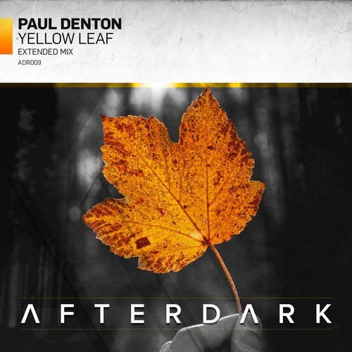 PAUL DENTON - YELLOW LEAF - 12.12.2016