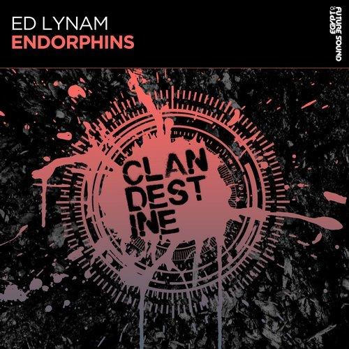 ED LYNAM - ENDORPHINS (ORIGINAL MIX) [FSOE CLANDESTINE] - 23.11.2018