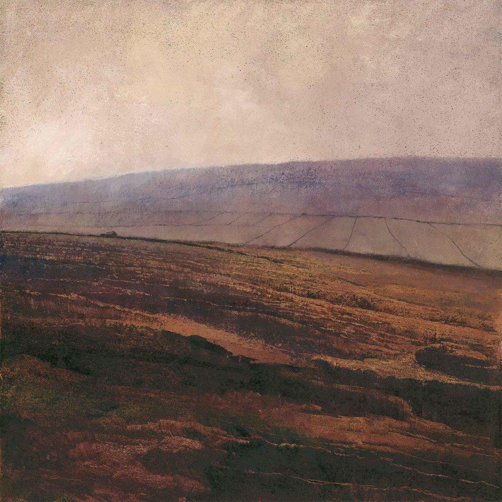 Autumn Bracken ( Edition of 195 )