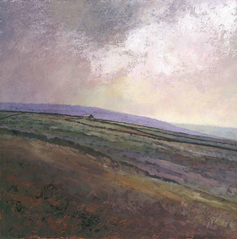 Windswept Moor ( Edition of 195 )