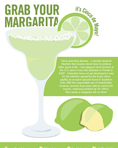 Grab Your Margarita Image