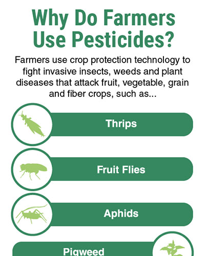 Why Do Farmers Use Pesticides Image