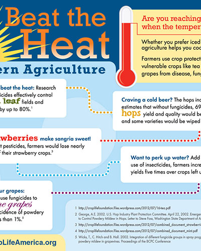 Beat the Heat Image