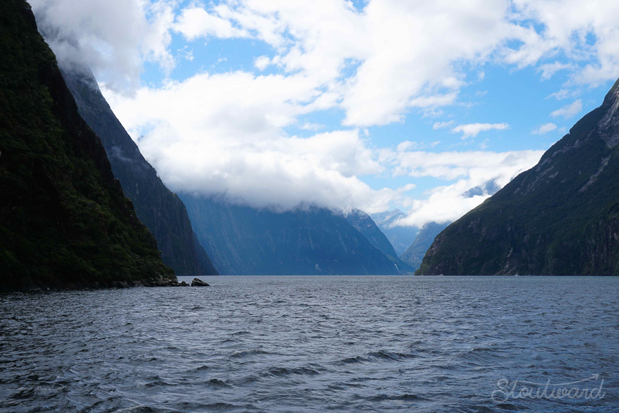 Fun fact. Milford Sound is not actually a sound. It is a Fjord, which is carved by a glacier and backfilled by the sea whereas a sound is carved by a river.