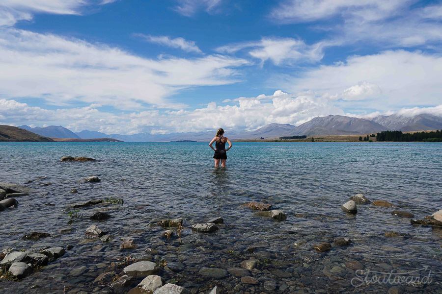 Cooling off in Lake Tekapo.