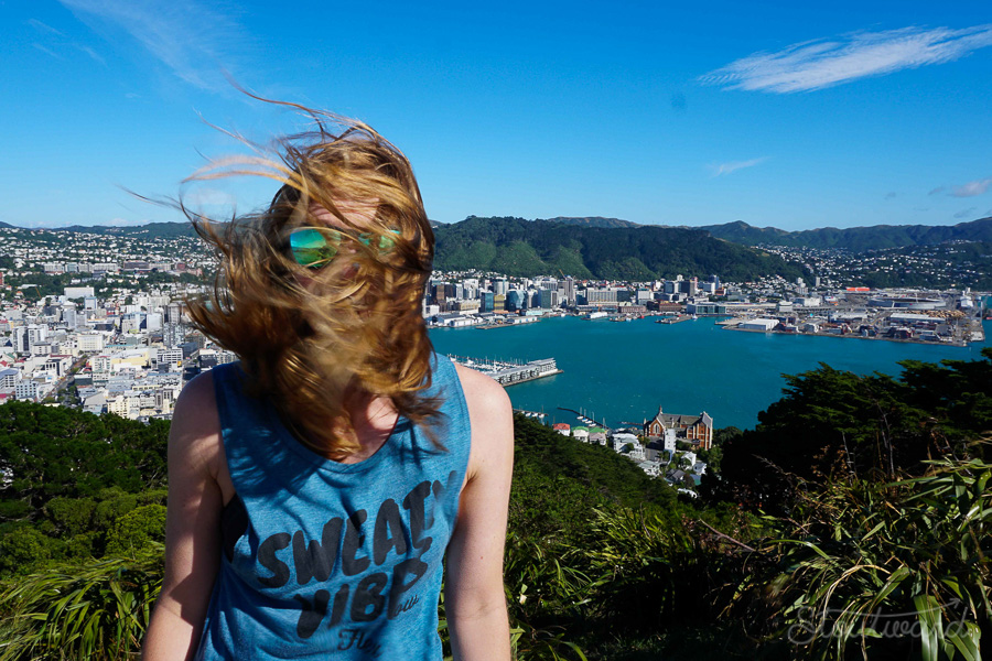 Wellington is actually the windiest city. Don't tell Chicago.