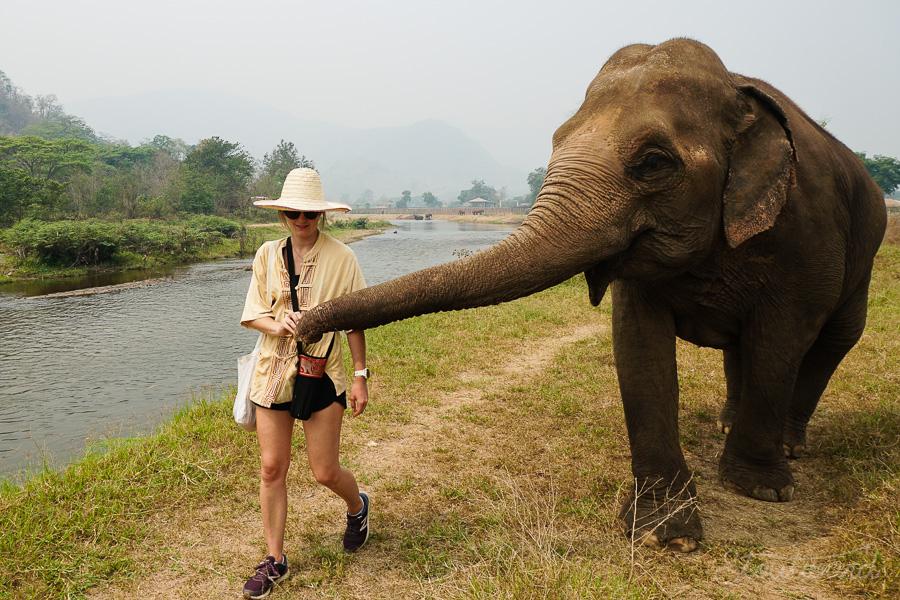 Elephants_Chiang Mai_Thailand_ENP_Elephant 8Nature Park_Rescue_Volunteer_Hike_Feed_Bath-1.jpg
