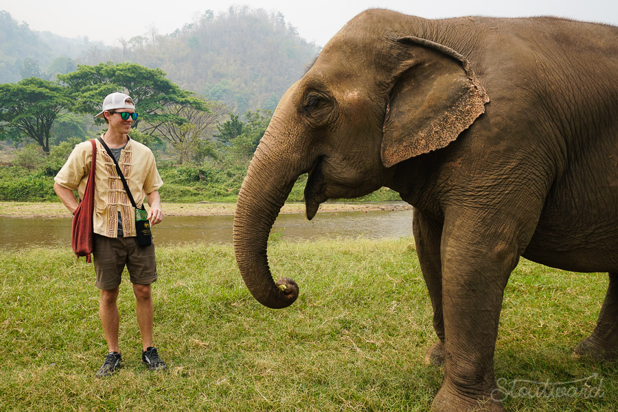 Elephants_Chiang Mai_Thailand_ENP_Elephant Nature Park_Rescue_Volunteer_Hike_Feed_Bath_Baby_Animals-8.jpg