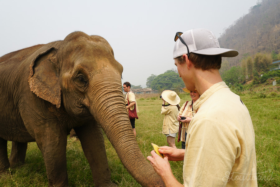 Elephants_Chiang Mai_Thailand_ENP_Elephant Nature Park_Rescue_Volunteer_Hike_Feed_Bath_Baby_Animals-9.jpg