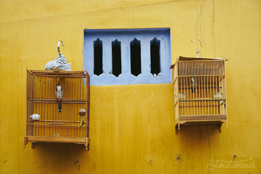 Bird cages next to a blue window pinned to yellow walls in Hoi An Vietnam.