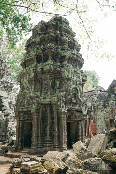 tower of ruins at Ta Prohm temple (tomb raider temple) in angkor area of siem reap cambodia.