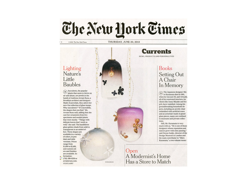 Avram_Rusu_NYT_Press_Page.jpg