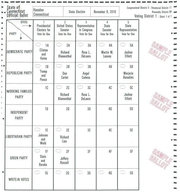 sample ballot.PNG