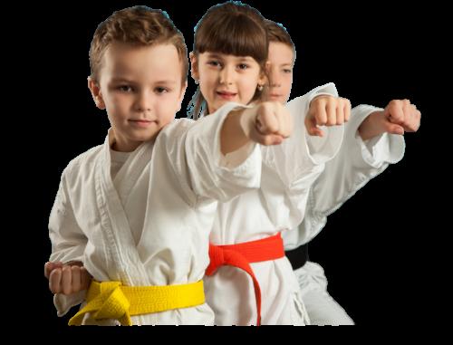 Karate-6-PNG.png