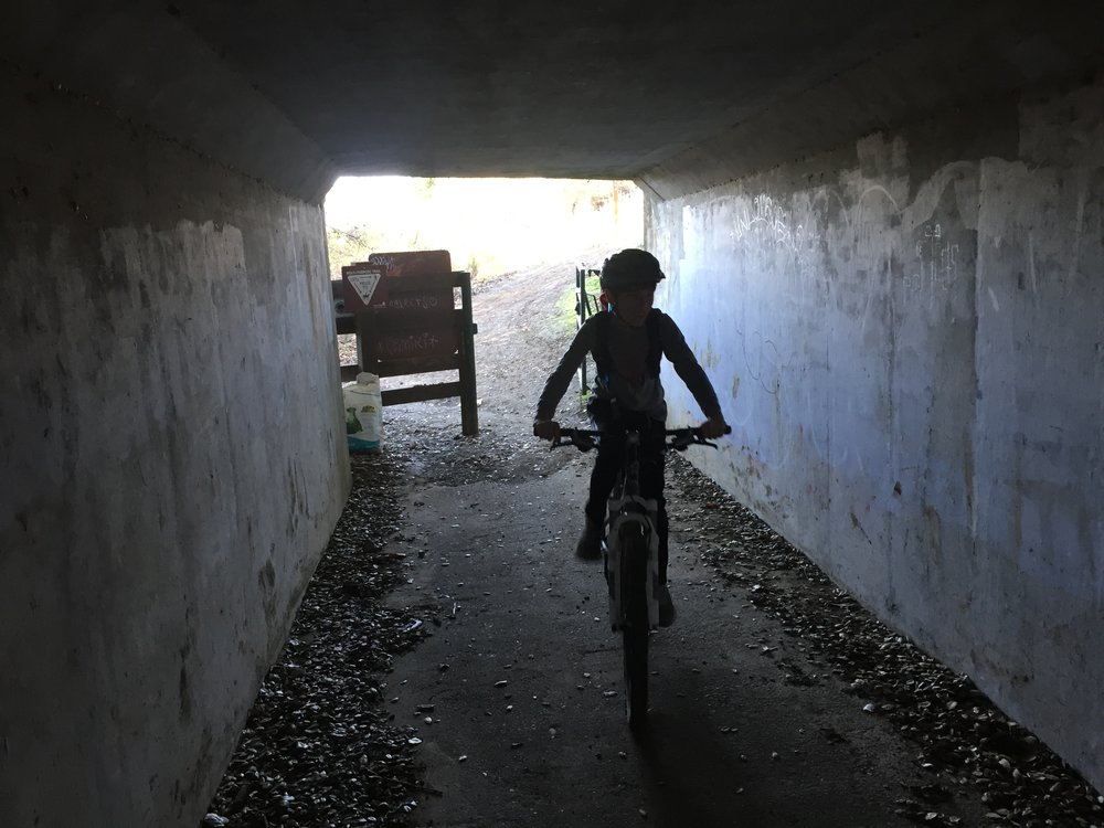 Lucas rides through the tunnel under Cummings Skyway.