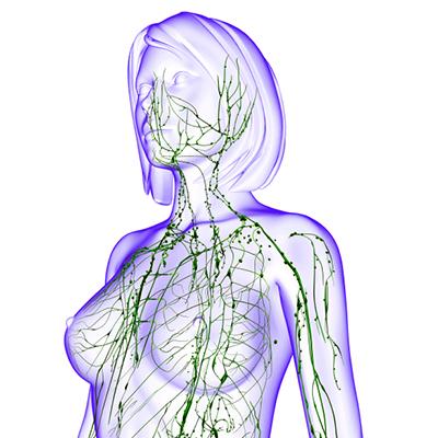 Lymphatic-Drainage-Massage.jpg