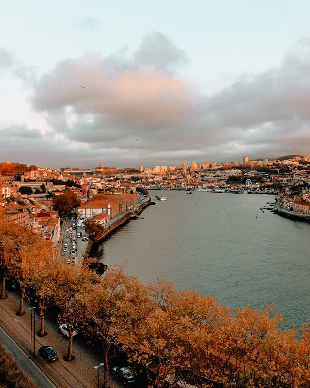 Porto, even your gray skies light up my heart 🍁