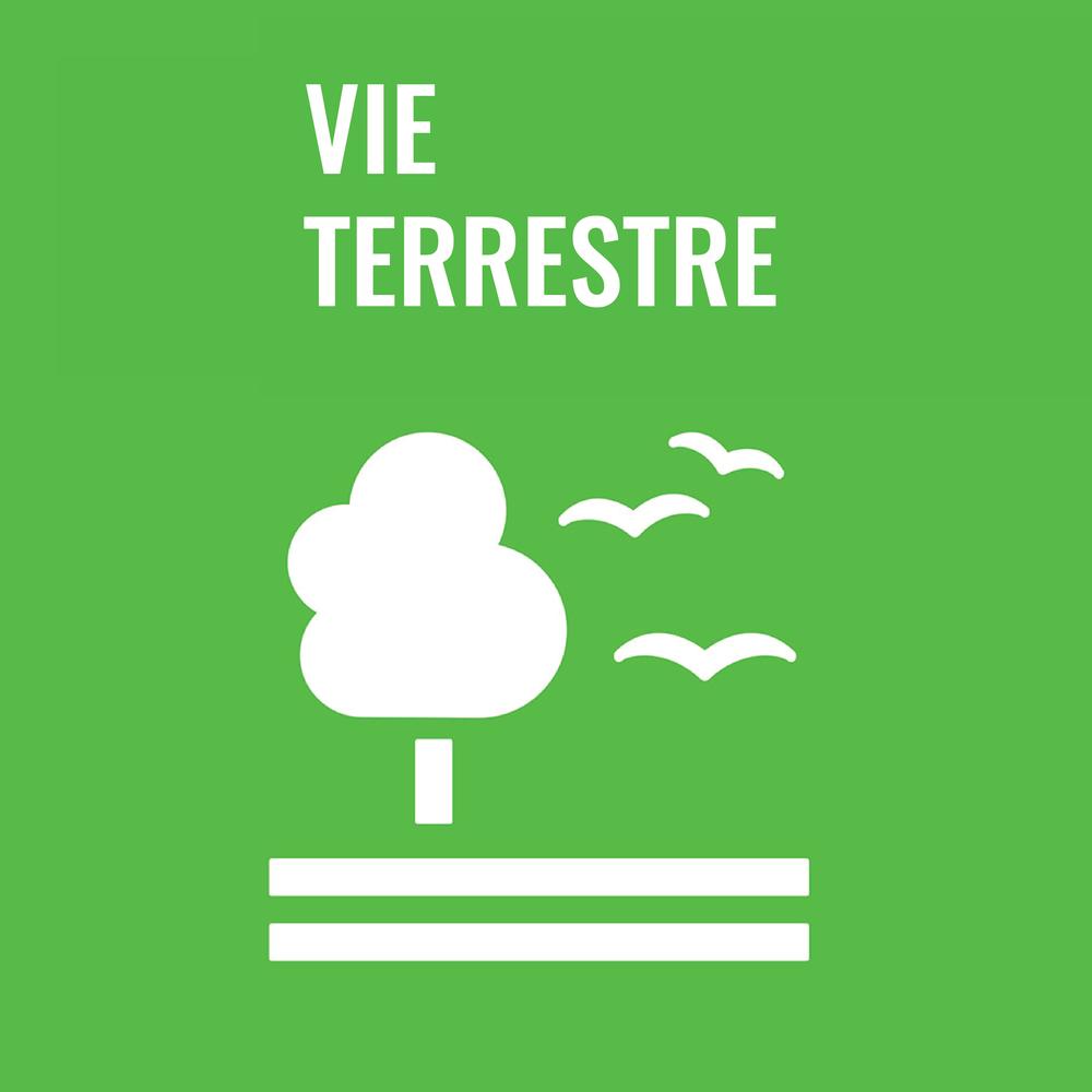 Vie Terrestre-01.png