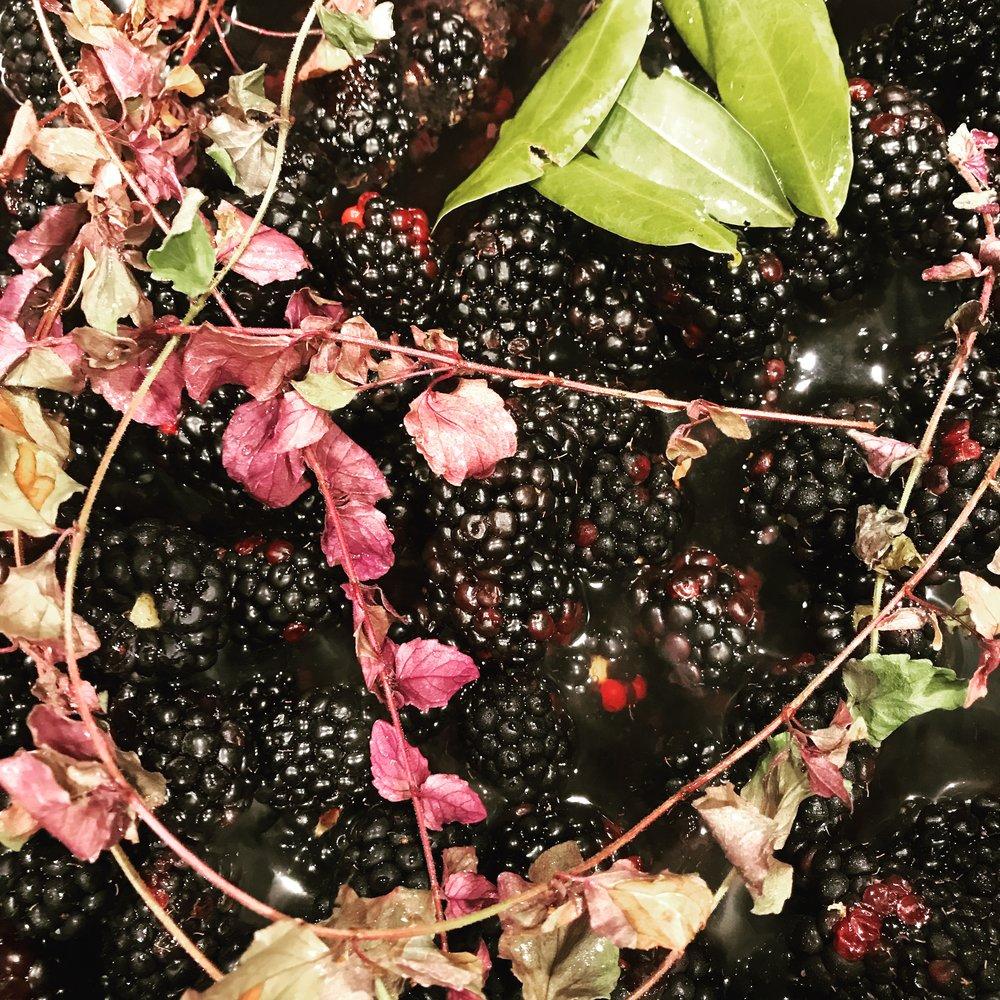 'enesmin 'ayye sokoote + čawrišim • bay laurel + yerba buena blackberry sauce