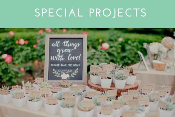SPECIAL PROJECTS  Are you planning a party or special event, and need help with coordination?We  LOVE  getting creative behind the scenes and helping your vision come to life! Let us know how we can help you prepare for the big day and assist on the day-of, so that you can enjoy and be a part of your celebration.