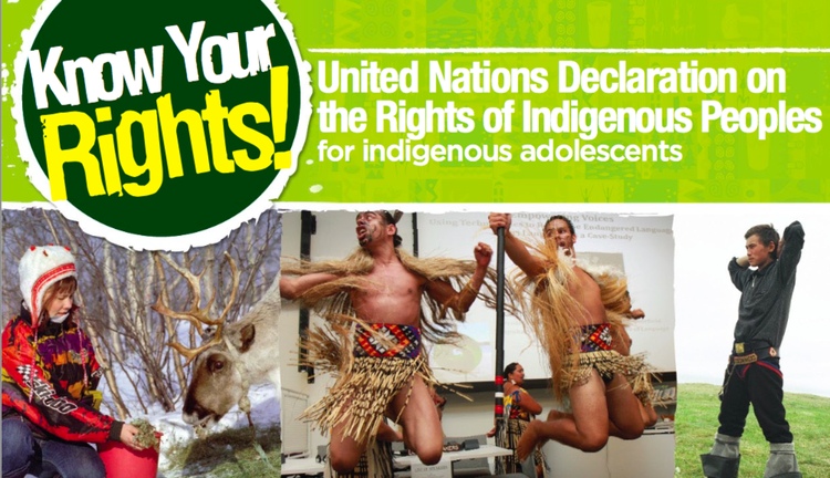 Adolescent-Friendly Version of the United Nations Declaration on the Rights of Indigenous Peoples