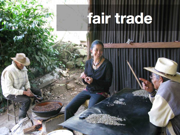 Learning from coffee and cacao farmers in Mexico