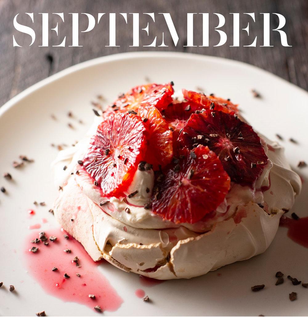 Website Sept Cover Shot.jpg