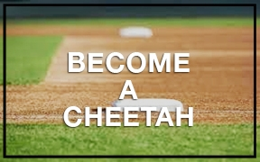 Be a Cheetah