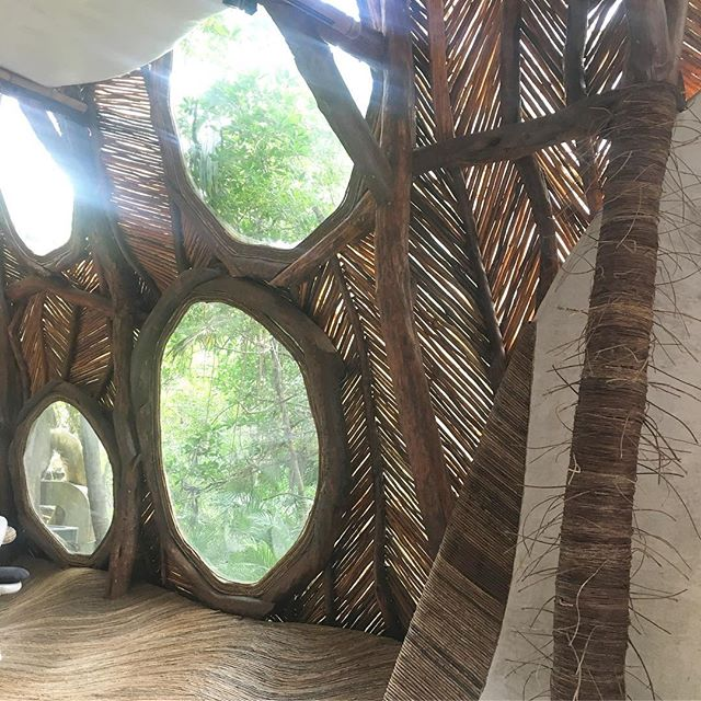 Cold rainy Nashville has us daydreaming about #tulum We were in awe of the art gallery at Azulik resort with its tree branch ceiling, vine & concrete floors/walls. • • • • #takemebacktotulum #inspiredbydesign #openspaces #naturallighting