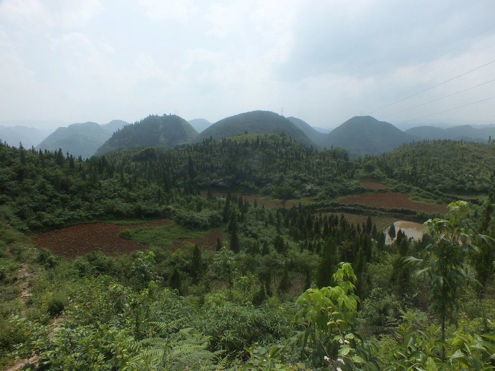 Guizhou's hills, June 2014. (Photo by me)