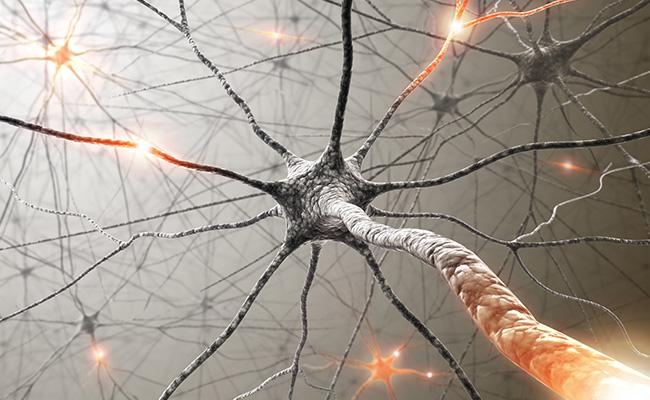 SYMPATHETHIC AND PERIPHERAL NERVE BLOCKS -