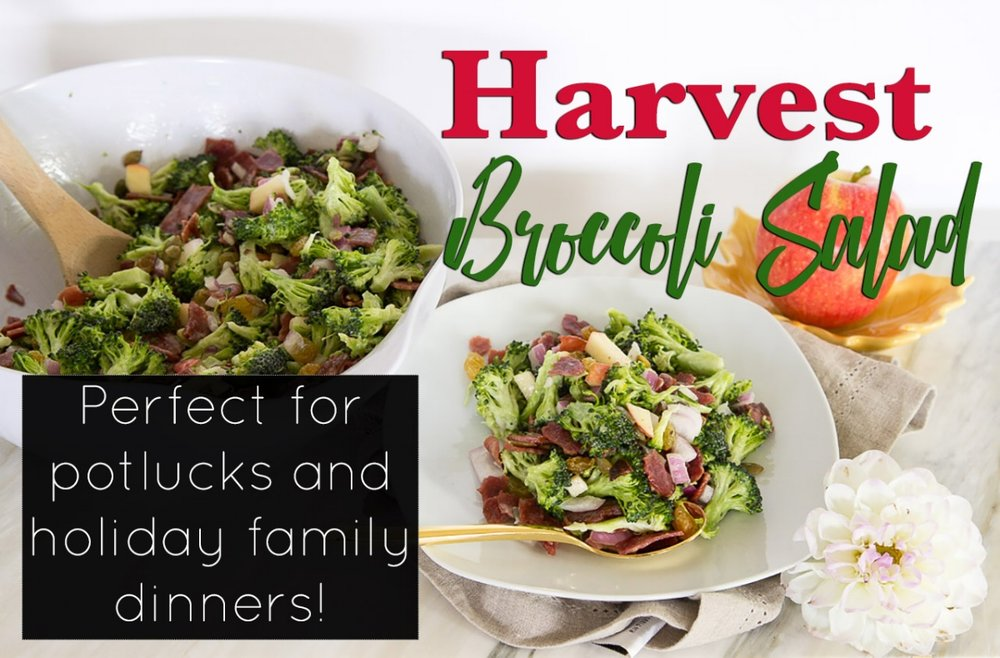 Harvest Broccoli Salad Recipe Perfect for Potlucks and Holiday Get Togethers