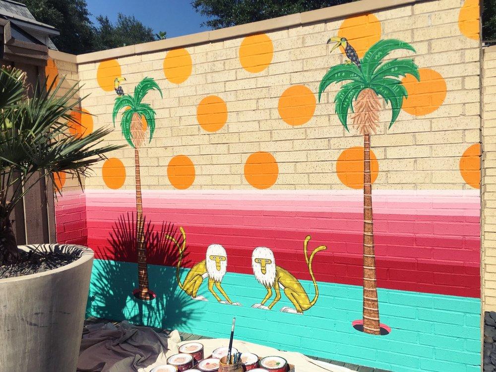 Finished Drigo mural in Kessler Park, Dallas, Texas