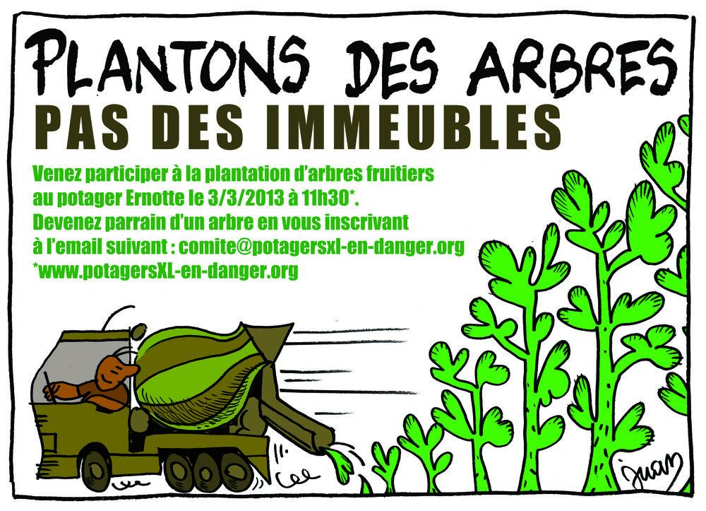 plantation6.jpg