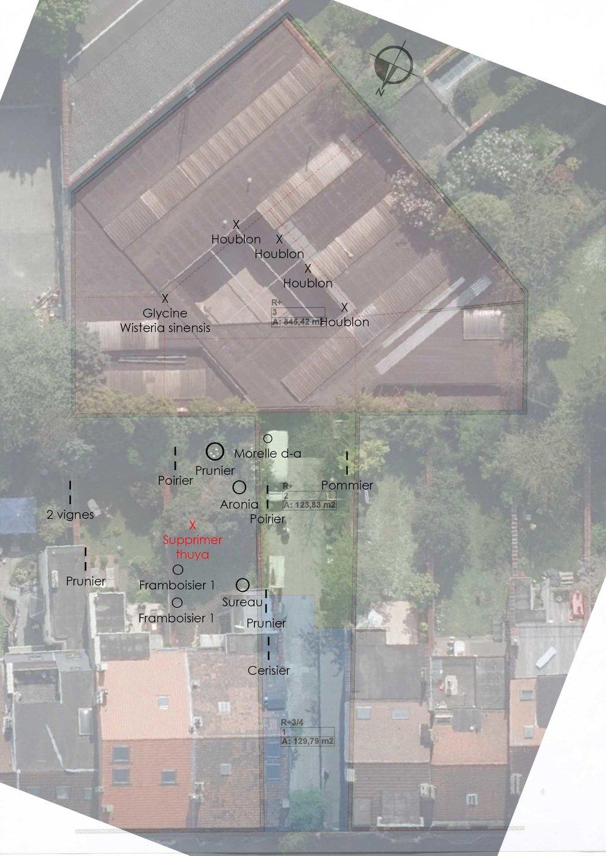 Plan de plantation sur plusieurs jardins