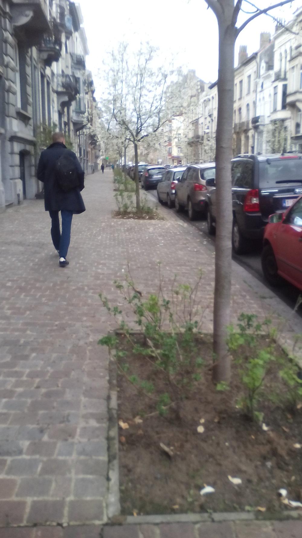 Les casseilliers en rue