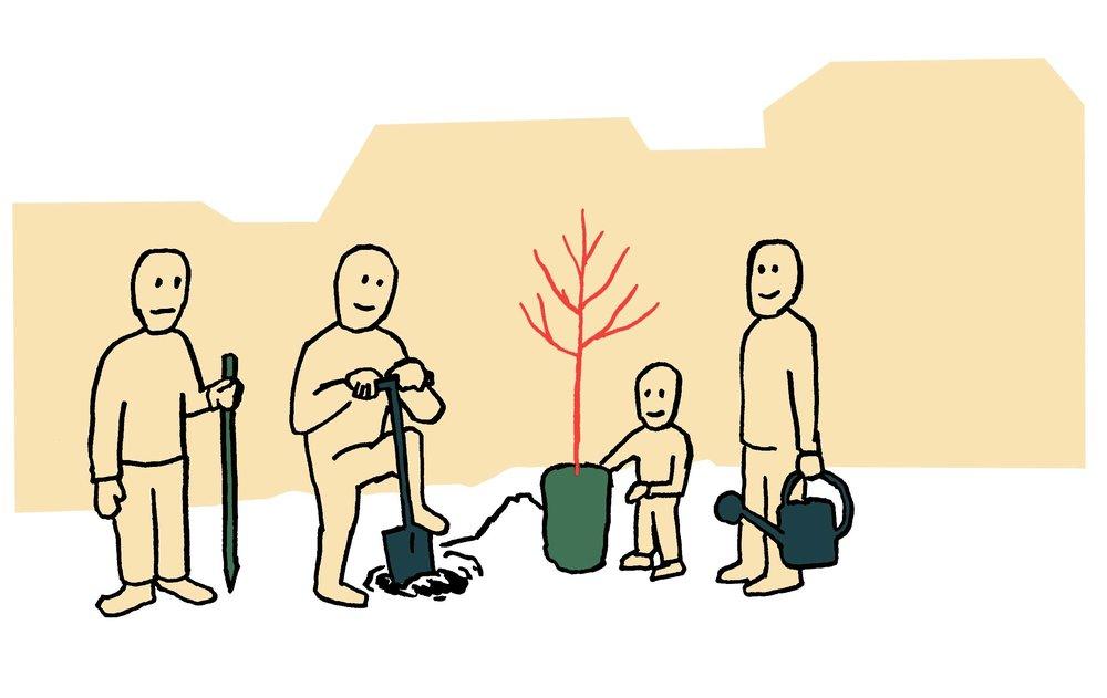 2. plantation.jpg