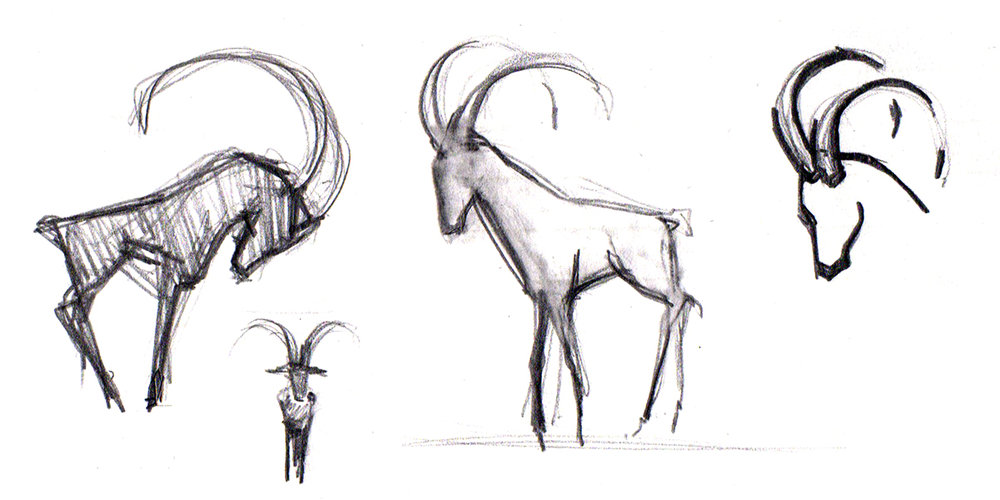 CAPRICORN SKETCHES FOR SIGNAGE