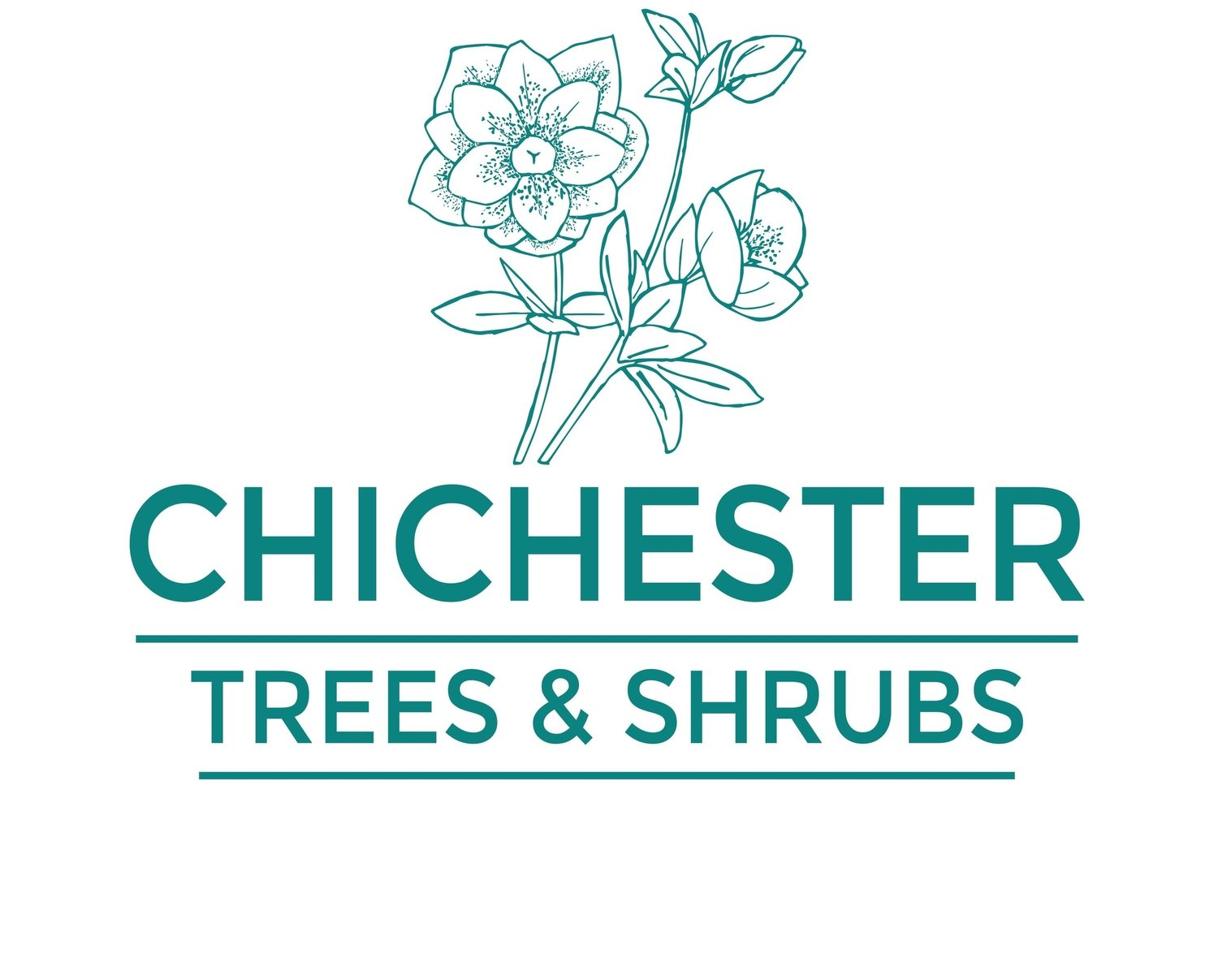 Chichester Trees and Shrubs Ltd.