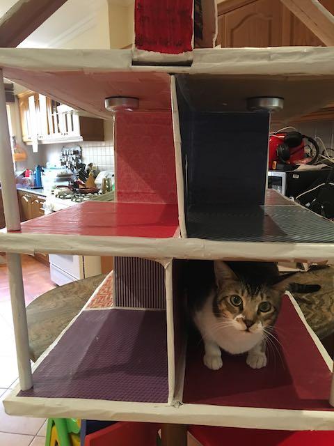 dollhouse (1).jpg