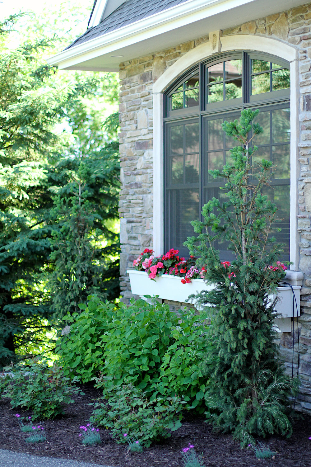 Finding the right greens to use for curb appeal can beautify any home.