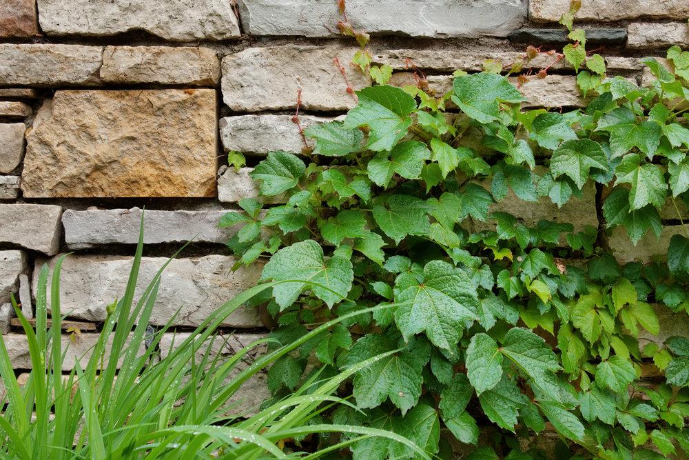 retaining-edina-wall.jpg