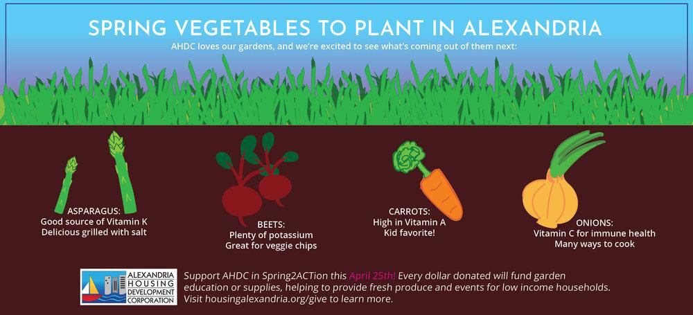 Spring Planting in ALX Community Gardens - (Image JEPG)