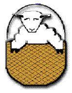 woolwicker.jpg