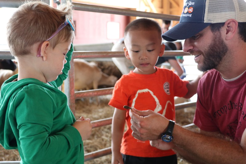 barn-education-kids.jpg