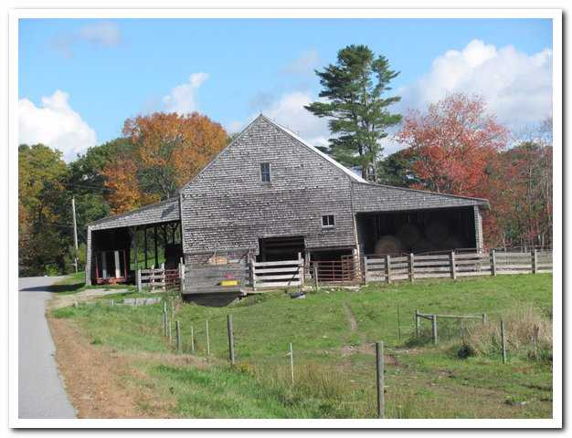 The Pote Barn, as it looked earlier this year, is one of several on Wolfe's Neck Farm. Its interior spaces were arranged for the purposes of a 19th century subsistence farm and the fabric deteriorated due to underuse. It will be a centerpiece of farm operations once again, housing the heifers and dry cows of the farm's new dairy apprentice program.