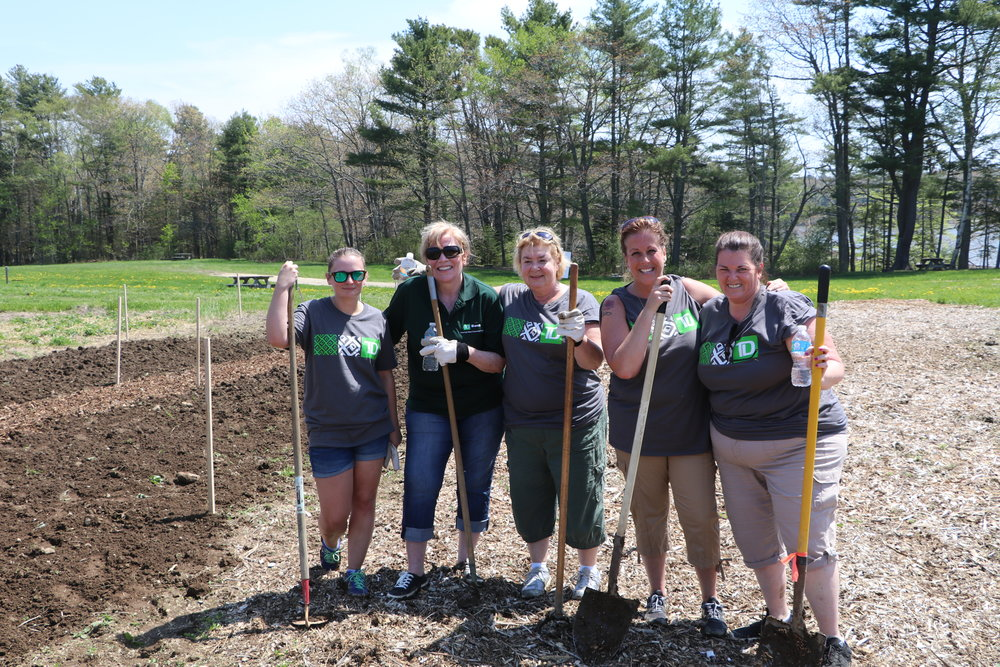 volunteer - We are always appreciative of those who wish to come out and help around the farm.  If you are an individual or organization interested in volunteering your time, please fill out our Volunteer Application Form.