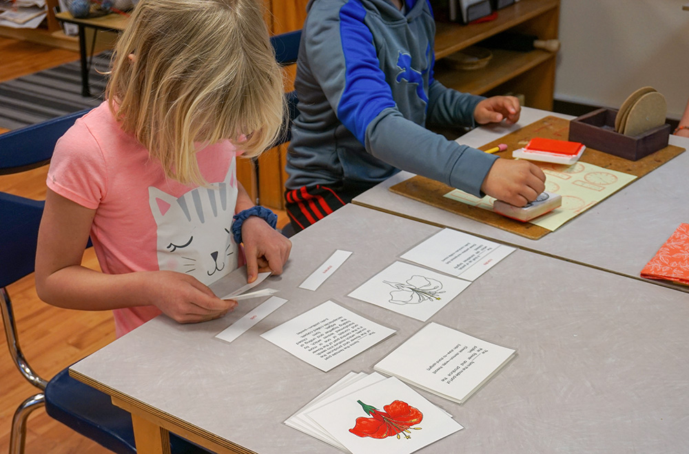 2-mcminnville-montessori-school-elementary-slideshow.jpg