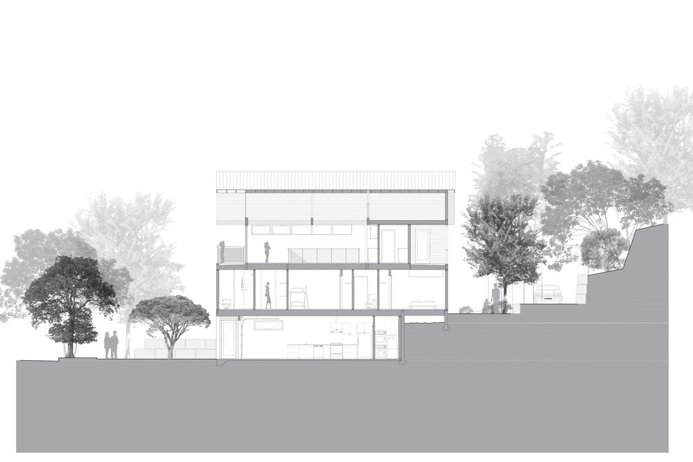 LESCHI HOUSE - LONG SECTION.jpg